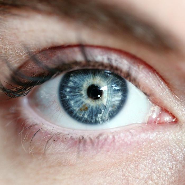 Auge 01